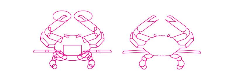 Complex Crab Illustration